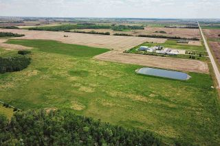 Photo 6: 49279 RR250: Rural Leduc County Rural Land/Vacant Lot for sale : MLS®# E4141338