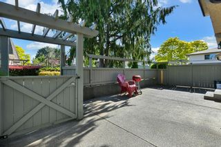 Photo 11: 36 4061 Larchwood Dr in : SE Cedar Hill Row/Townhouse for sale (Saanich East)  : MLS®# 874763