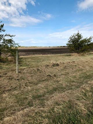 Photo 11: RR 255 & HWY 37: Rural Sturgeon County Rural Land/Vacant Lot for sale : MLS®# E4244134