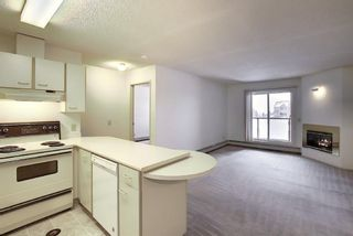 Photo 7: 2031 Edenwold Heights NW in Calgary: Edgemont Apartment for sale : MLS®# A1066741