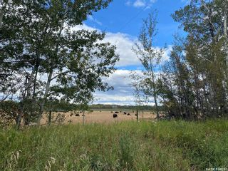 Photo 46: Mayview Acreage Rural Address in Shellbrook: Residential for sale (Shellbrook Rm No. 493)  : MLS®# SK871532