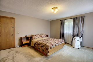 Photo 21: 172 Edendale Way NW in Calgary: Edgemont Detached for sale : MLS®# A1133694