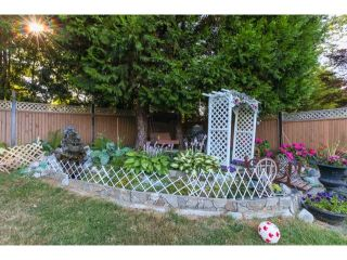 Photo 15: 2941 267B Street in Langley: Home for sale : MLS®# F1446771