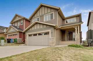 Main Photo: 245 Evanspark Circle NW in Calgary: Evanston Detached for sale : MLS®# A1138778