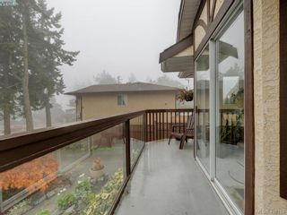 Photo 21: 2800 Austin Ave in VICTORIA: SW Gorge House for sale (Saanich West)  : MLS®# 800400