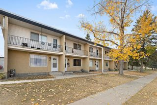 Photo 20: 302 2211 19 Street NE in Calgary: Vista Heights Row/Townhouse for sale : MLS®# A1152885