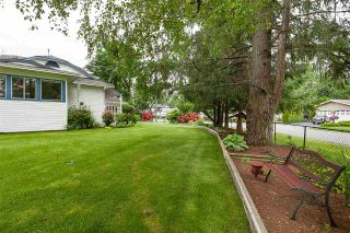 """Photo 16: 4548 SOUTHRIDGE Crescent in Langley: Murrayville House for sale in """"Murrayville"""" : MLS®# R2375830"""