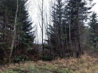 Photo 2: LOT 3 Timberline Way in : Sk Jordan River Land for sale (Sooke)  : MLS®# 862147