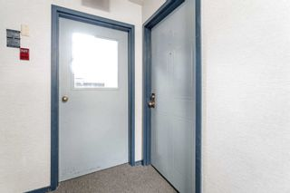 Photo 4: 1021 95 Trailwood Drive in Mississauga: Hurontario Condo for sale : MLS®# W4878419