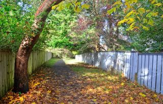 Photo 49: 2315 Greenlands Rd in : SE Arbutus House for sale (Saanich East)  : MLS®# 885822