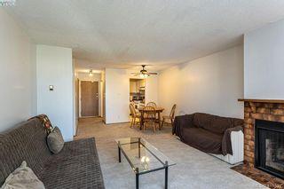 Photo 7: 301 1619 Morrison St in VICTORIA: Vi Jubilee Condo for sale (Victoria)  : MLS®# 815889