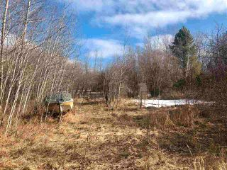 Photo 4: 12002 Twp Rd 605A: Rural St. Paul County Rural Land/Vacant Lot for sale : MLS®# E4239018