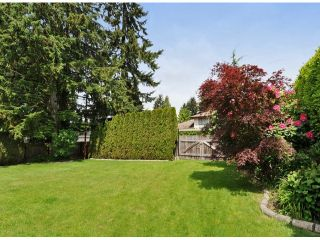 """Photo 19: 821 COTTONWOOD Avenue in Coquitlam: Coquitlam West House for sale in """"WEST COQUITLAM"""" : MLS®# V1067082"""