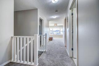 Photo 22: 27 Walden Mount SE in Calgary: Walden Detached for sale : MLS®# A1061206
