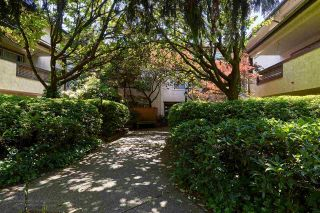 """Photo 25: 108 809 W 16TH Street in North Vancouver: Hamilton Condo for sale in """"PANORAMA COURT"""" : MLS®# R2066824"""