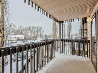 Photo 10: 50 3519 49 Street NW in Calgary: Varsity Apartment for sale : MLS®# A1065199
