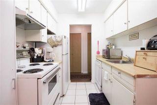 Photo 7: 211 15238 100 AVENUE in Surrey: Guildford Condo for sale (North Surrey)  : MLS®# R2239017