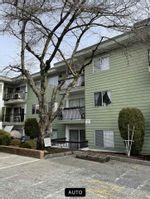 """Main Photo: 327A 8635 120 Street in Delta: Annieville Condo for sale in """"Delta Cedars"""" (N. Delta)  : MLS®# R2539226"""