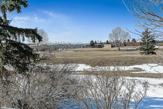 Photo 37: 3 Downey Green: Okotoks Detached for sale : MLS®# A1088351