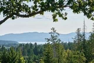 Photo 60: 10977 Greenpark Dr in : NS Swartz Bay House for sale (North Saanich)  : MLS®# 883105