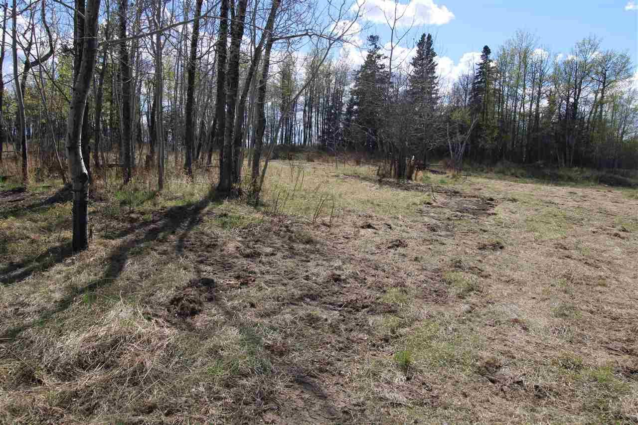 Main Photo: 57032 RR 50: Rural Lac Ste. Anne County Rural Land/Vacant Lot for sale : MLS®# E4244016