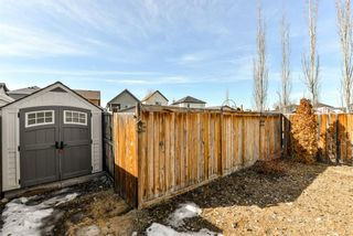 Photo 30: 368 Copperstone Grove SE in Calgary: Copperfield Detached for sale : MLS®# A1084399
