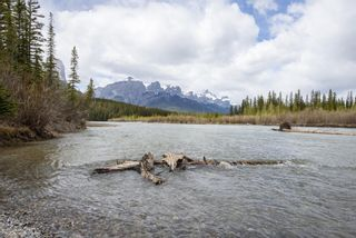 Photo 28: 204 155 Crossbow Place: Canmore Apartment for sale : MLS®# A1113750