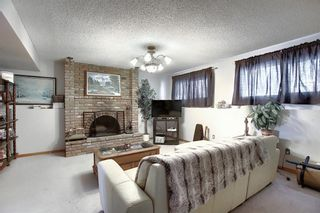 Photo 18: 67 Penmeadows Place SE in Calgary: Penbrooke Meadows Detached for sale : MLS®# A1066670