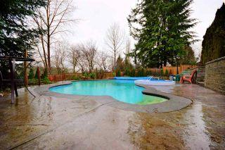 Photo 20: 23547 108 AVENUE in Maple Ridge: Albion House for sale : MLS®# R2036139