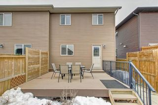 Photo 46: 175 LEGACY Mews SE in Calgary: Legacy Semi Detached for sale : MLS®# C4242797