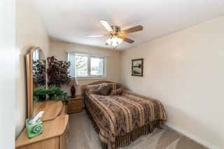 Photo 26: 12 Equestrian Place: Rural Sturgeon County House for sale : MLS®# E4229821