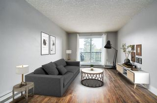 Photo 4: 305 1530 16 Avenue SW in Calgary: Sunalta Apartment for sale : MLS®# A1131555