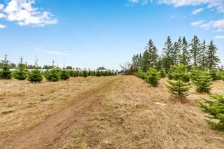 "Photo 34: 5010 236 Street in Langley: Salmon River House for sale in ""STRAWBERRY HILLS"" : MLS®# R2547047"