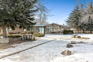 Photo 19: 184 MAPLE COURT Crescent SE in Calgary: Maple Ridge Detached for sale : MLS®# A1080744