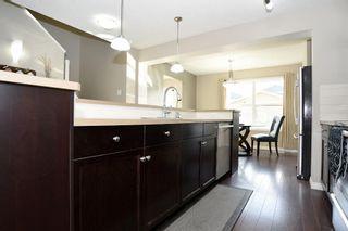 Photo 19: 629 McDonough Link in Edmonton: Zone 03 House for sale : MLS®# E4241883
