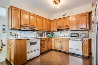 Photo 9: 3511 34 Avenue SW in Calgary: Rutland Park Detached for sale : MLS®# A1061908