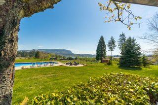 Photo 51: 6685 Lakes Rd in : Du East Duncan House for sale (Duncan)  : MLS®# 873956