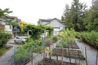 """Photo 18: 4 19250 65 Avenue in Surrey: Clayton Townhouse for sale in """"Sunberry Court"""" (Cloverdale)  : MLS®# R2408587"""