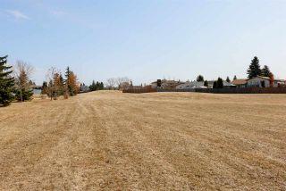 Photo 36: 17132 94 Street in Edmonton: Zone 28 House for sale : MLS®# E4237536
