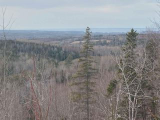 Photo 13: 380 McGraths Mountain Road in French River: 108-Rural Pictou County Residential for sale (Northern Region)  : MLS®# 202107934