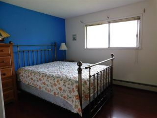 Photo 15: 9258 172 Street in Surrey: Fleetwood Tynehead House for sale : MLS®# R2539746