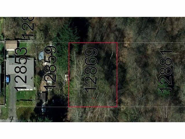 Main Photo: 12869 113B Avenue in Surrey: Bridgeview Land for sale (North Surrey)  : MLS®# R2529411