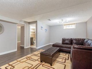 Photo 18: 71 Whitefield Close NE in Calgary: Whitehorn Detached for sale : MLS®# A1020344