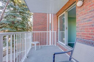 Photo 25: 210 525 56 Avenue SW in Calgary: Windsor Park Apartment for sale : MLS®# A1086866