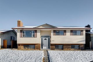 Photo 2: 3812 49 Street NE in Calgary: Whitehorn Detached for sale : MLS®# A1054455