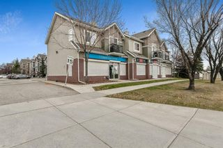 Photo 23: 92 92 Erin Woods Court SE in Calgary: Erin Woods Apartment for sale : MLS®# A1153347