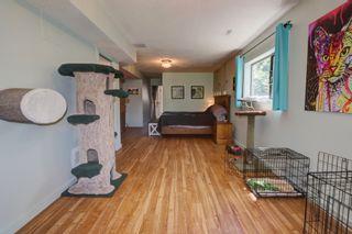 Photo 33: 2921 Cedar Drive in Sorrento: Blind Bay House for sale (South Shuswap)  : MLS®# 10232374