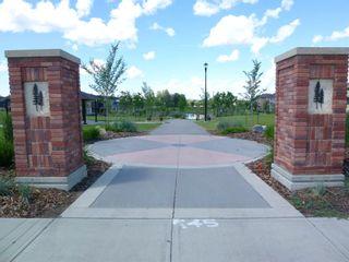 Photo 5: 3080 KESWICK Way in Edmonton: Zone 56 House Half Duplex for sale : MLS®# E4246945