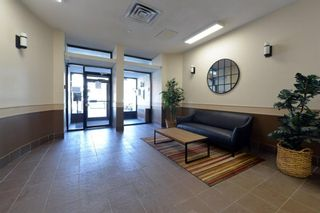 Photo 22: 308 505 19 Avenue SW in Calgary: Cliff Bungalow Apartment for sale : MLS®# A1126941
