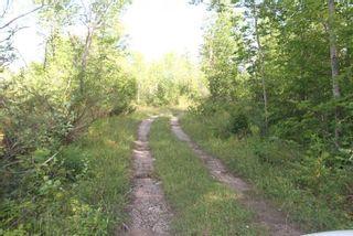 Photo 10: Lt 27 Ramblewood Trail in Kawartha Lakes: Rural Bexley Property for sale : MLS®# X4857401
